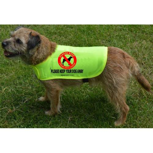Please Keep Your Dog Away - Fluorescent Neon Yellow Dog Coat Jacket