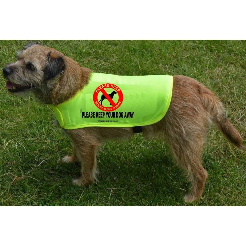 Please Keep Your Dog Away - Fluorescent Neon Yellow Dog Coat Jacket