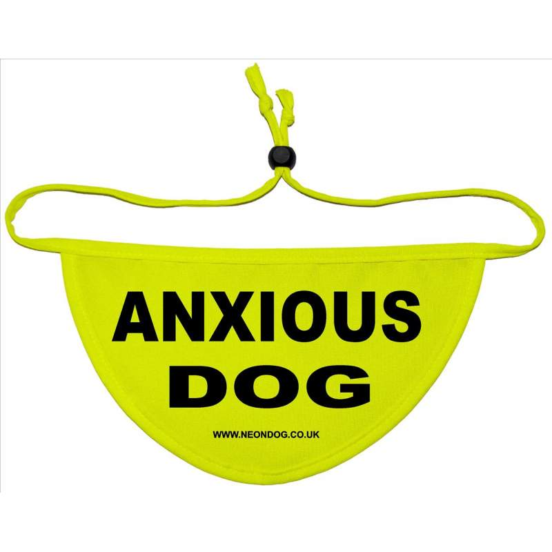Anxious Dog - Fluorescent Neon Yellow Dog Bandana
