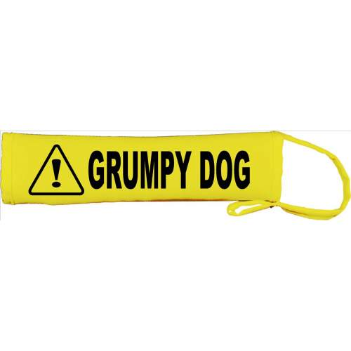 Grumpy Dog - Fluorescent Neon Yellow Dog Lead Slip