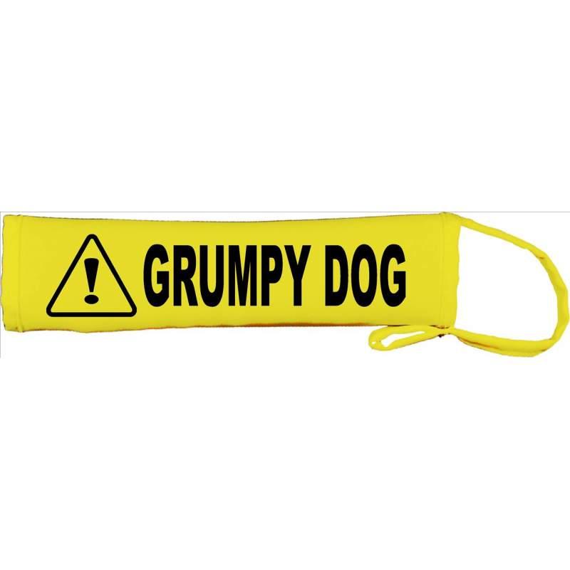 Grumpy Dog - Fluorescent Neon Yellow Dog Lead Slip