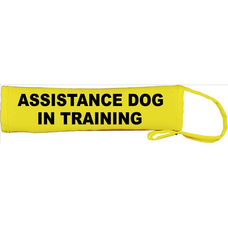 Assistance Dog In Training - Fluorescent Neon Yellow Dog Lead Slip
