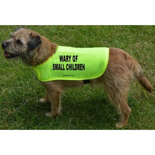 WARY OF SMALL CHILDREN - Fluorescent Neon Yellow Dog Coat Jacket