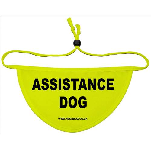 ASSISTANCE DOG - Fluorescent Neon Yellow Dog Bandana