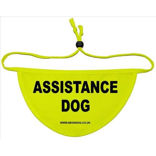 ASSISTANCE DOG - Fluorescent Neon Yellow Dog Bandana