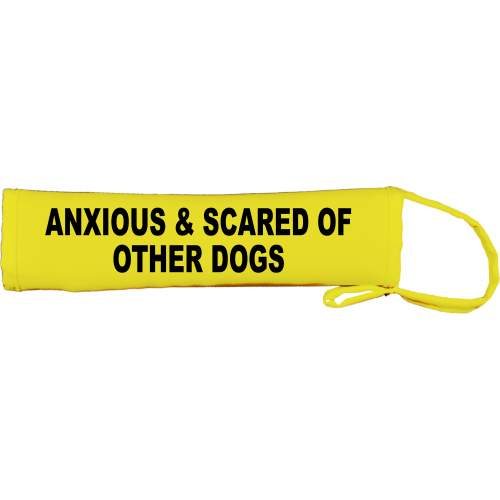 Anxious & Scared Of Other Dogs - Fluorescent Neon Yellow Dog Lead Slip