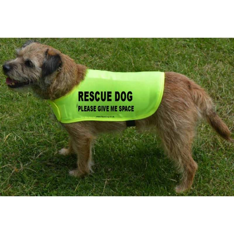 Rescue dog please give me space - Fluorescent Neon Yellow Dog Coat Jacket