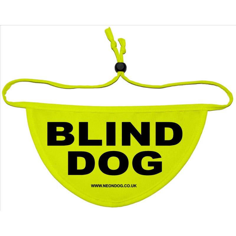Blind Dog - Fluorescent Neon Yellow Dog Bandana
