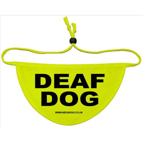 Deaf Dog - Fluorescent Neon Yellow Dog Bandana