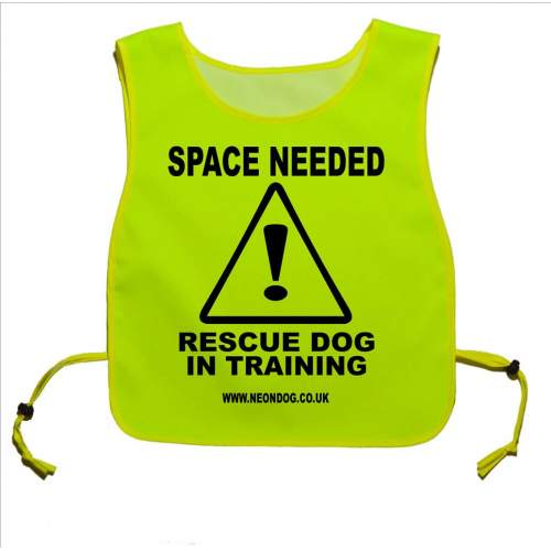Caution Rescue Dog In Training - Fluorescent Neon Yellow Tabbard