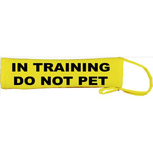 In Training Do Not Pet - Fluorescent Neon Yellow Dog Lead Slip