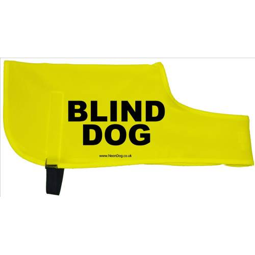 Blind Dog - Fluorescent Neon Yellow Dog Coat Jacket