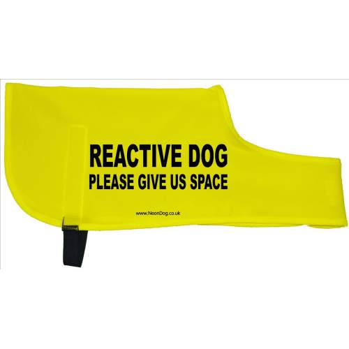 reactive dog please give us space - Fluorescent Neon Yellow Dog Coat Jacket