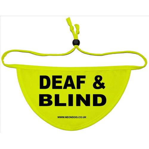 DEAF & BLIND- Fluorescent Neon Yellow Dog Bandana
