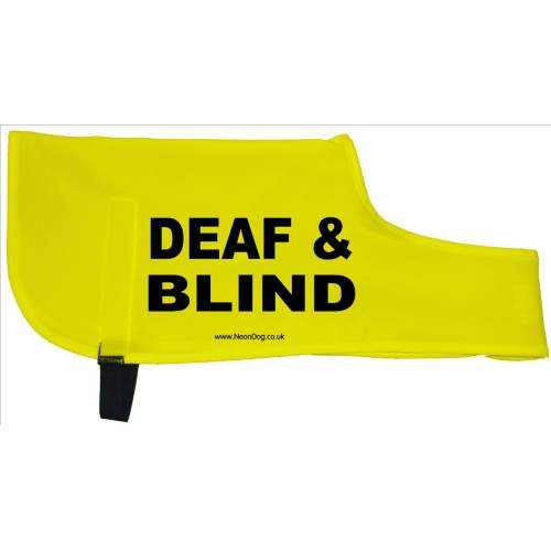 DEAF & BLIND - Fluorescent Neon Yellow Dog Coat Jacket