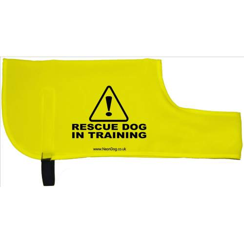 Caution Rescue Dog In Training - Fluorescent Neon Yellow Dog Coat Jacket