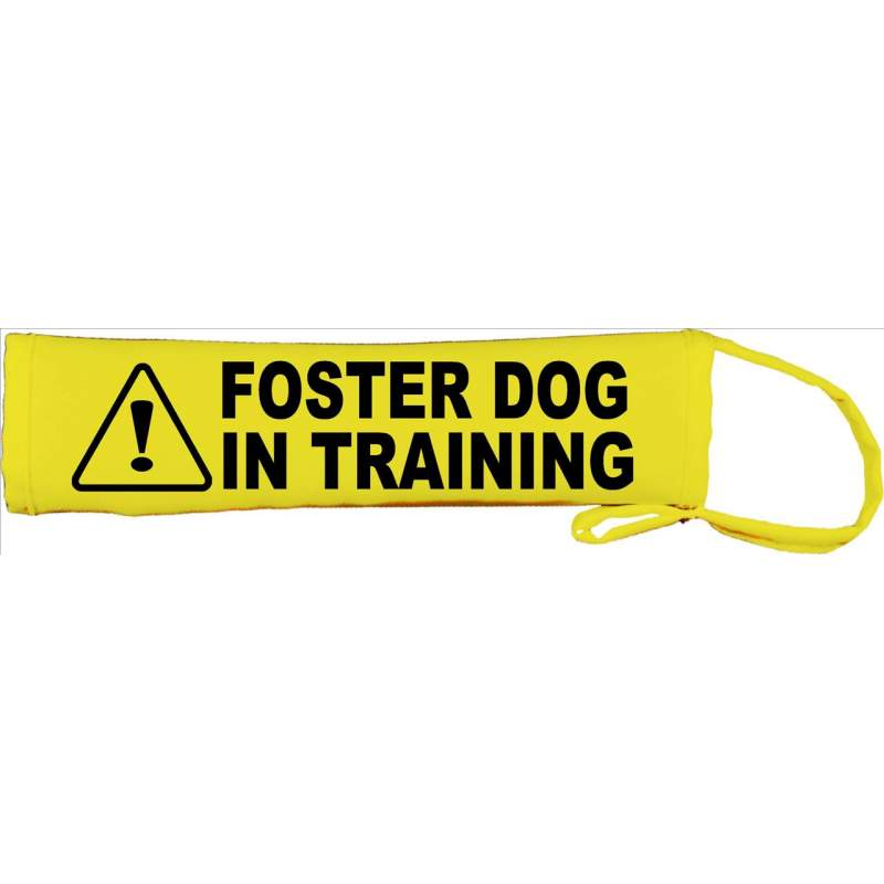Foster Dog in Training - Please adopt me - Fluorescent Neon Yellow Dog Lead Slip