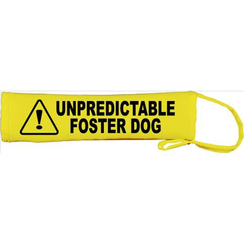 Unpredictable Foster Dog - Fluorescent Neon Yellow Dog Lead Slip
