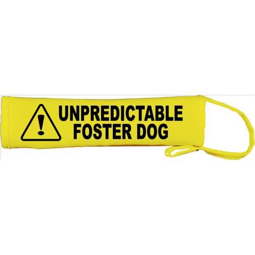 Unpredictable Foster Dog- Please adopt me - Fluorescent Neon Yellow Dog Lead Slip