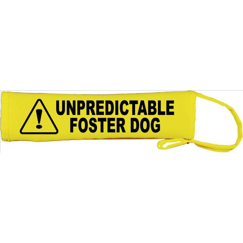 Unpredictable Foster Dog- Please adopt me - Fluorescent Neon Yellow Dog Lead Slip
