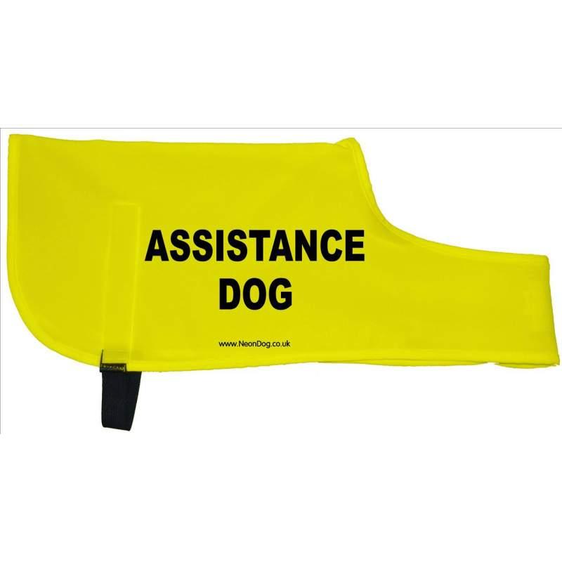 Assistance Dog - Fluorescent Neon Yellow Dog Coat Jacket