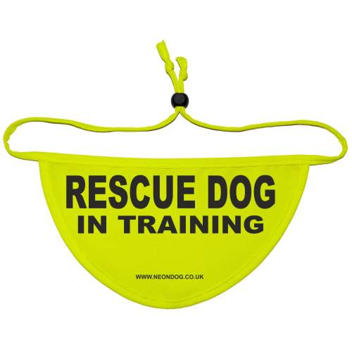 Caution Rescue Dog In Training - Fluorescent Neon Yellow Dog Bandana