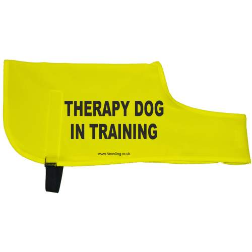 Therapy Dog In training - Fluorescent Neon Yellow Dog Coat Jacket