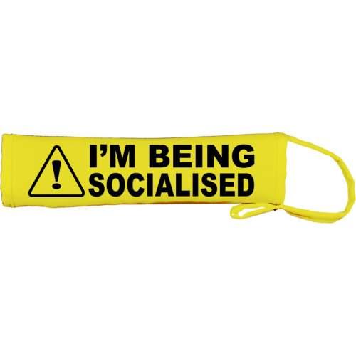 Warning I'm Being Socialised - Fluorescent Neon Yellow Dog Lead Slip