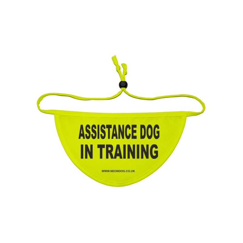 Assistance Dog In Training - Fluorescent Neon Yellow Dog Bandana