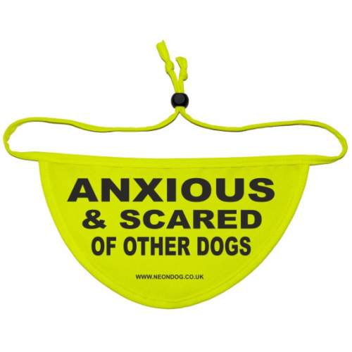 Anxious & Scared Of Other Dogs - Fluorescent Neon Yellow Dog Bandana
