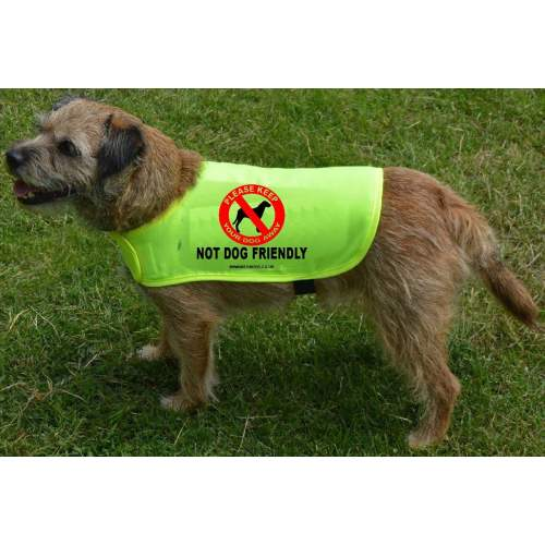 Not Dog Friendly - Fluorescent Neon Yellow Dog Coat Jacket