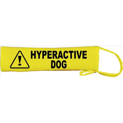 Hyperactive Dog - Fluorescent Neon Yellow Dog Lead Slip