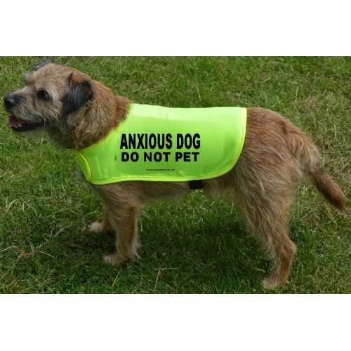ANXIOUS DOG DO NOT PET - Fluorescent Neon Yellow Dog Coat Jacket