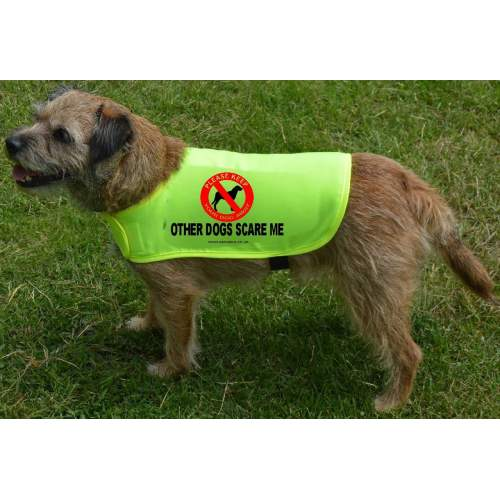 Other Dogs Scare Me - Fluorescent Neon Yellow Dog Coat Jacket